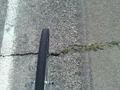 From left to right: road's edge line, my front wheel, piece of grass blowing the wrong way.